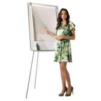 BI OFFICE EARTH-IT FLIPCHART TRIPOD EASEL