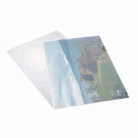 RAPESCO ECO CUT FLUSH FOLDER CLEAR - PACK OF 25