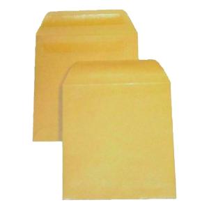 LYRECO PLAIN WAGE ENVELOPES PLAIN - BOX OF 1000
