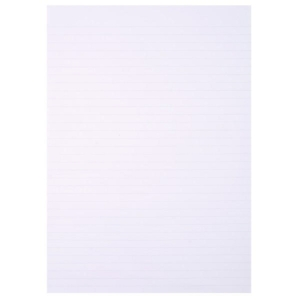 PK480 SHEET RULED FLY PAPER A4