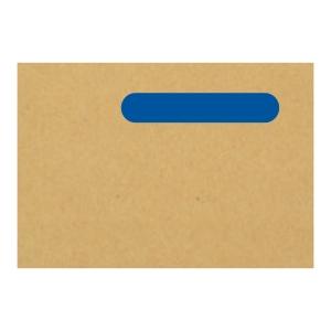 BOX1000 IRIS COMPATIBLE WAGE ENVELOPE 221MM X 153MM