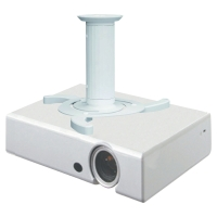 NEWSTAR BEAMER-C80 PROJECTOR CEILING MOUNT (HEIGHT: 8-15CM) WHITE